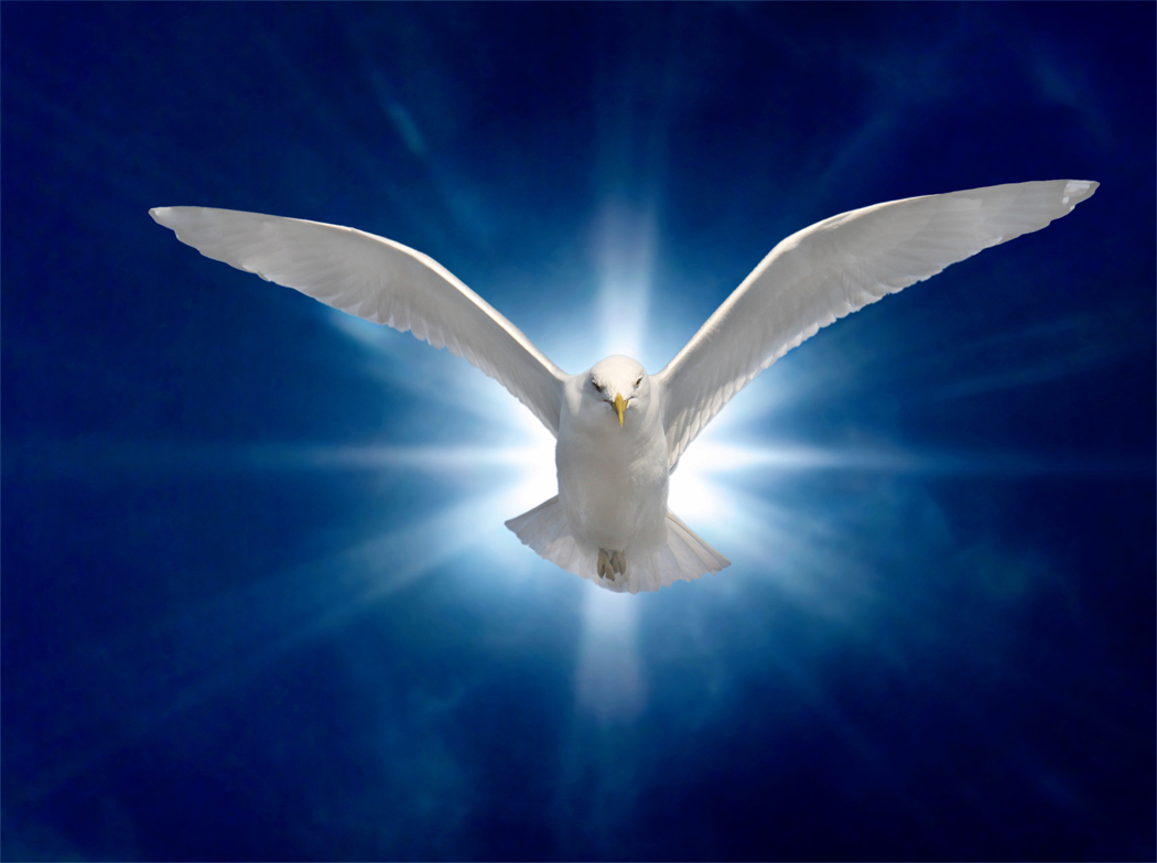 The Holy Spirit as a Dove (Mark 1:10).